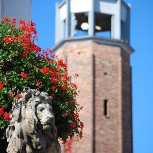 rzeźba lwa na tle czerwonych kwiatów. Z tyłu ceglana wieża