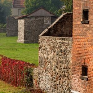 widok na mury miejskie, częściowo porosniete liścmi