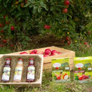 Regional products - natural Juices