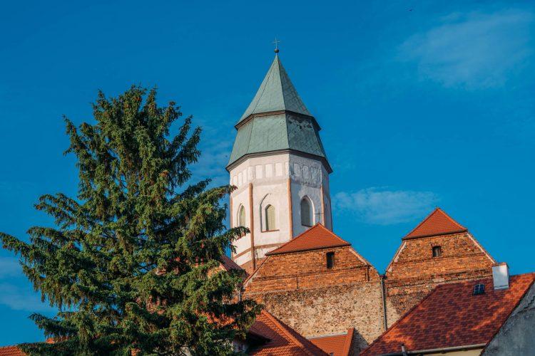 Widok na zabytkową budowlę ze szpiczastą wieżą. Na pierwszym planie drzewo