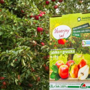 Natural apple juice from Kozuchow, western Poland
