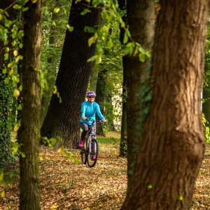 cycling routes: Woman on bike in forest