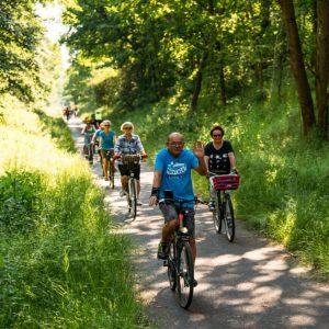 Grupa rowerzystów na trasie wśród zieleni. Jadą rowerami.